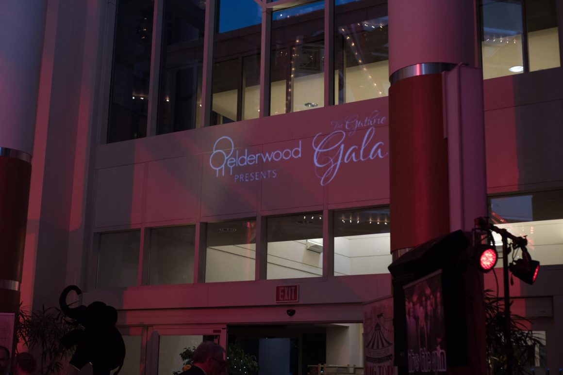 What a Show! Circus-Themed Gala Raises Nearly $100,000